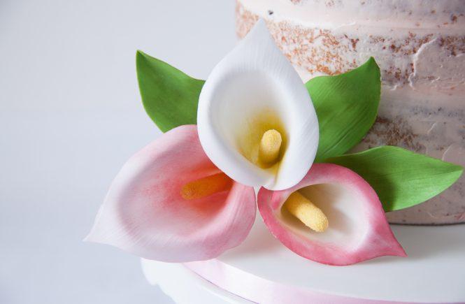Die nachhaltige Torte